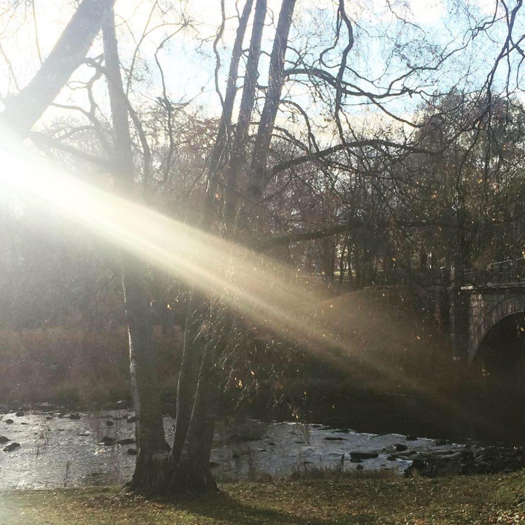 Bro i Gävle
