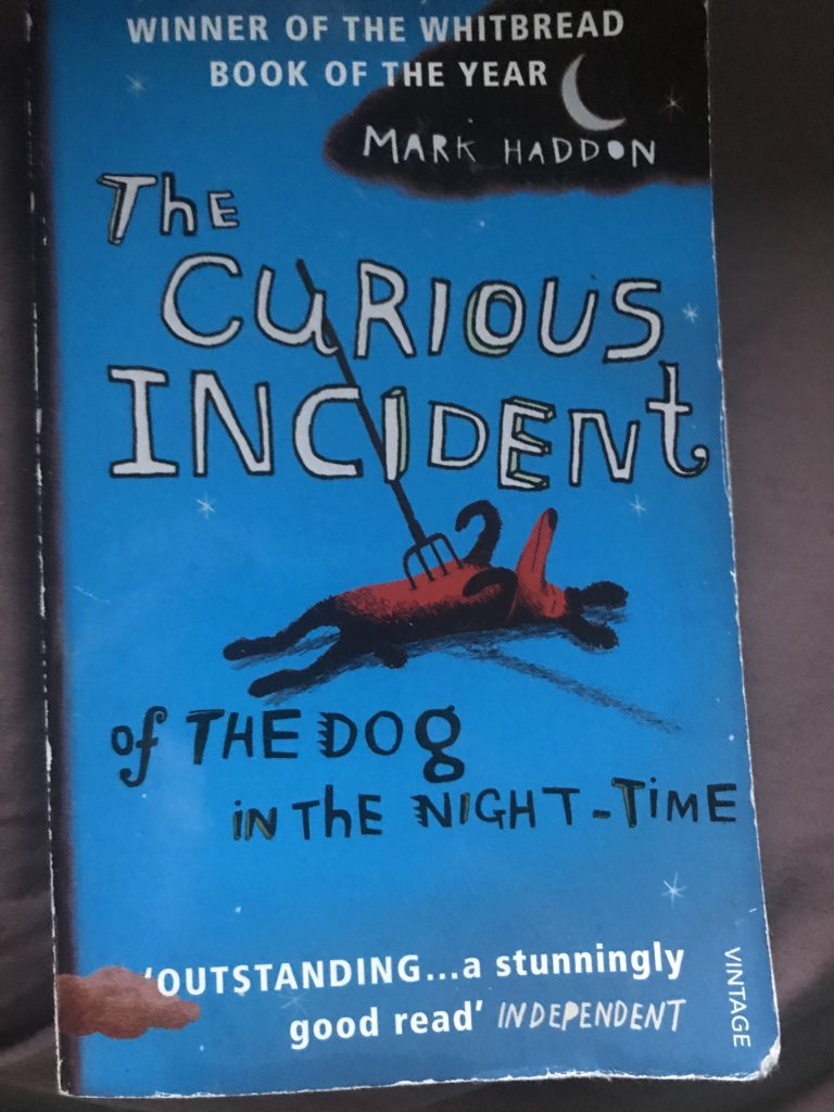 The curious incident of the dog in the night time, bok